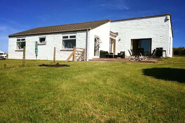 Thumbnail Detached bungalow to rent in St. Minver, Wadebridge