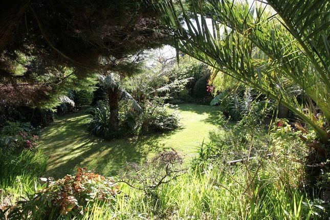 Rear Garden of 2 Marlborough Crescent, Falmouth TR11