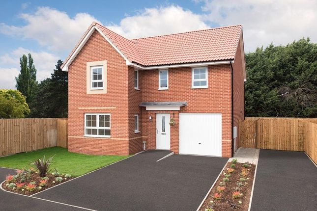 "4 bedroom detached house for sale in ""Halton"" at Carter Knowle Road, Bannerdale, Sheffield"