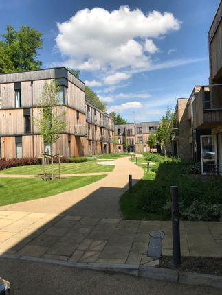 Thumbnail Flat to rent in Clock House Gardens, Welwyn