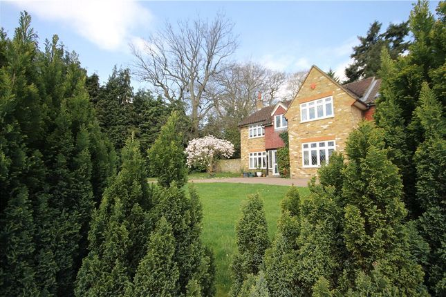 Thumbnail Detached house to rent in Greenways Drive, Sunningdale, Berkshire