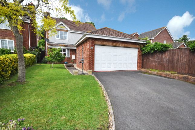 Thumbnail Detached house for sale in Lime Grove, Exminster, Exeter