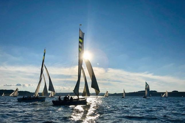 Working Boats Racing