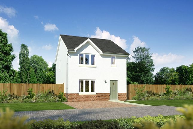 """Thumbnail Detached house for sale in """"Castlevale"""" at Drum Farm Lane, Bo'ness"""