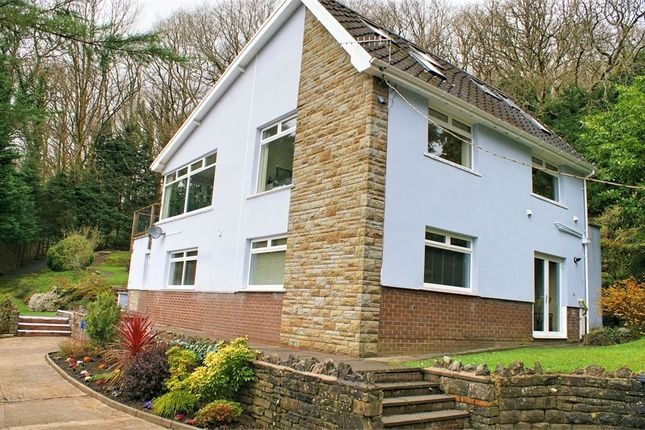 Thumbnail Detached house for sale in Bryncatwg, Cadoxton, Neath, West Glamorgan