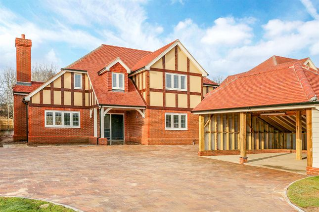 Thumbnail Detached house for sale in Station Road, Hellingly, Hailsham