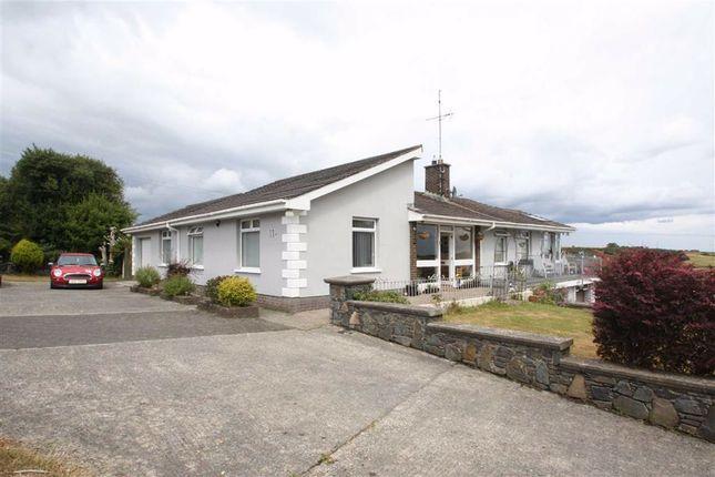 Thumbnail Detached bungalow for sale in Chapel Lane, Castlewellan, Down
