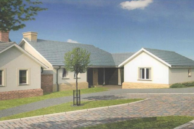 Thumbnail Detached bungalow for sale in Molesworth Way, Holsworthy