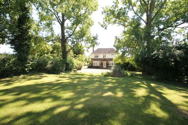 Thumbnail Detached house for sale in 'harling Springs', Eaton Bray, Bedfordshire