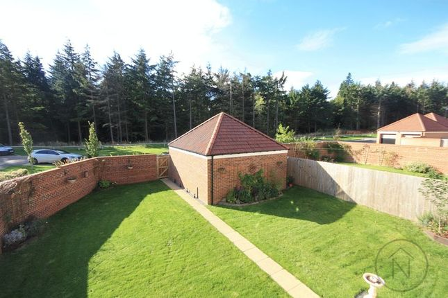 Thumbnail Detached house for sale in The Meadows, Wynyard, Billingham