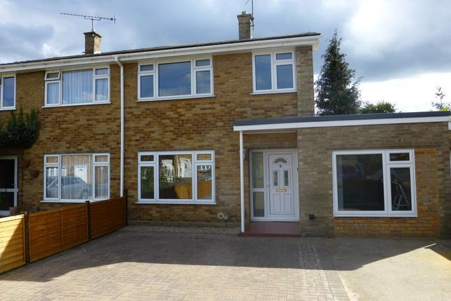 Thumbnail Semi-detached house to rent in Mendip Road, Farnborough