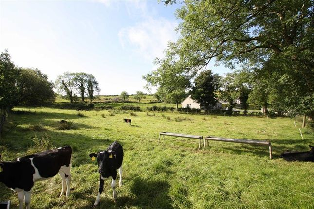 Thumbnail Land for sale in Drin Road, Dromara, Down