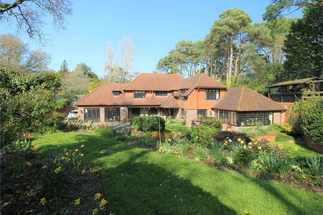 Castle Lane, Budleigh Salterton EX9