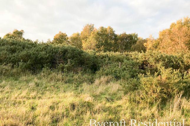 Land for sale in Marsh Lane, Belton, Great Yarmouth