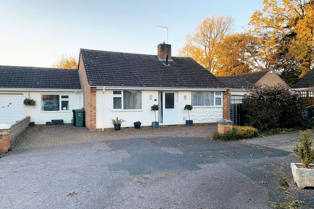 Thumbnail Detached bungalow for sale in Glenwood Gardens, Taunton, Somerset