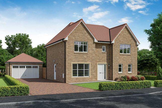 "Thumbnail Detached house for sale in ""Kingsley"" at Shawfair, Danderhall, Midlothian"