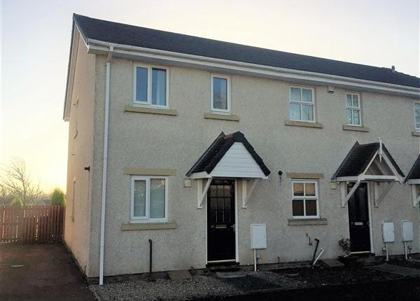 Thumbnail Mews house to rent in Mulberry Close, Clifton, Preston