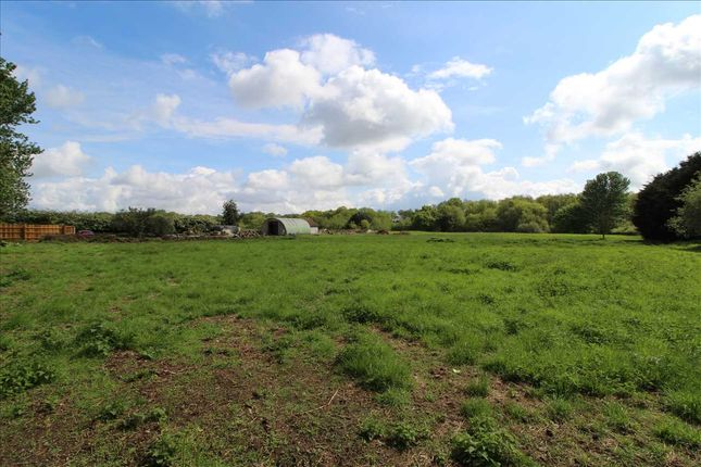 Thumbnail Land for sale in Poplars, Cage Lane, Colchester