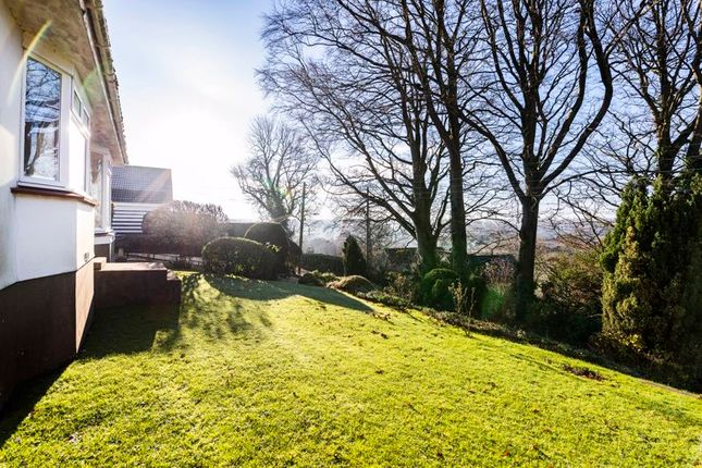 Front Lawn of Bristol Road, Radstock BA3