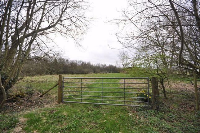 Haresfield Lane, Edge, Stroud GL6