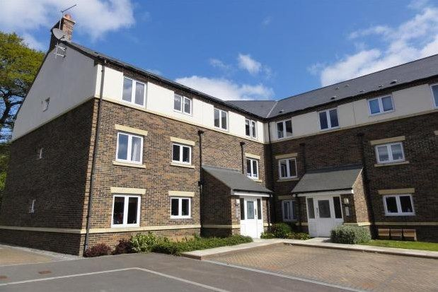 Thumbnail Flat to rent in Boste Crescent, Durham