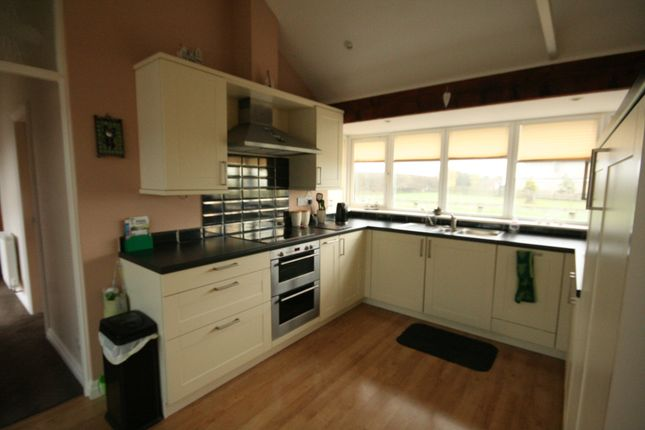 Thumbnail Bungalow to rent in Castley Lane, Pool-In-Wharfedale