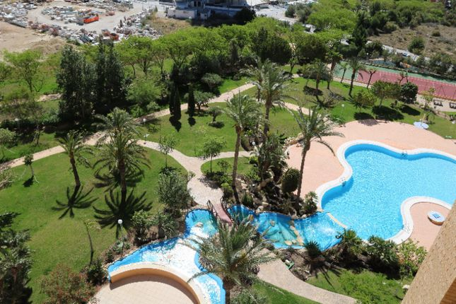 Thumbnail Apartment for sale in Benidorm
