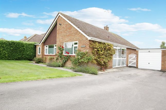 Thumbnail Detached bungalow for sale in Hazeley Close, Hartley Wintney, Hook