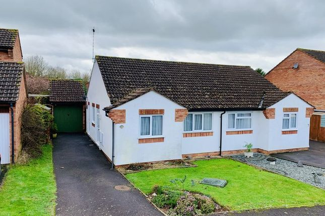 Thumbnail Semi-detached bungalow for sale in Bilberry Grove, Taunton