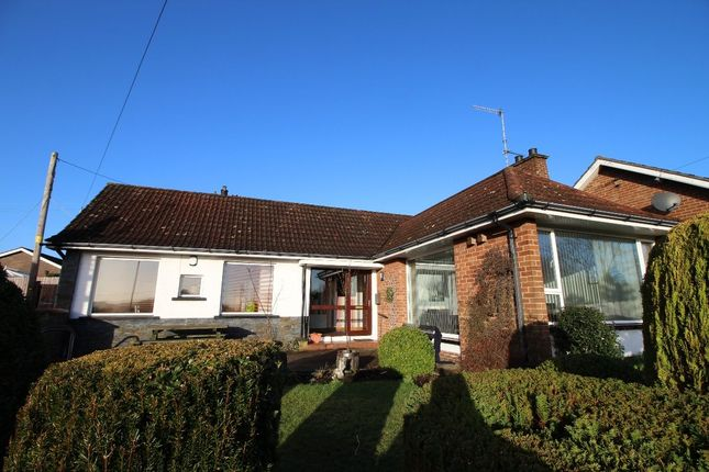 Thumbnail Bungalow for sale in Queensway, Lambeg, Lisburn