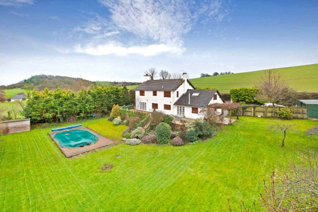 Thumbnail Detached house for sale in Hookway, Crediton