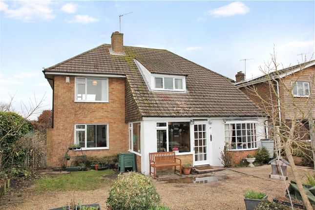 Thumbnail Property for sale in Oxenturn Road, Wye, Ashford, Kent