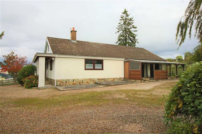 Thumbnail Detached bungalow for sale in Pinedale, Caerhowel, Montgomery, Powys