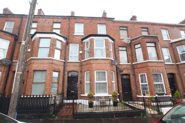 Thumbnail Terraced house to rent in Cedar Avenue, Belfast
