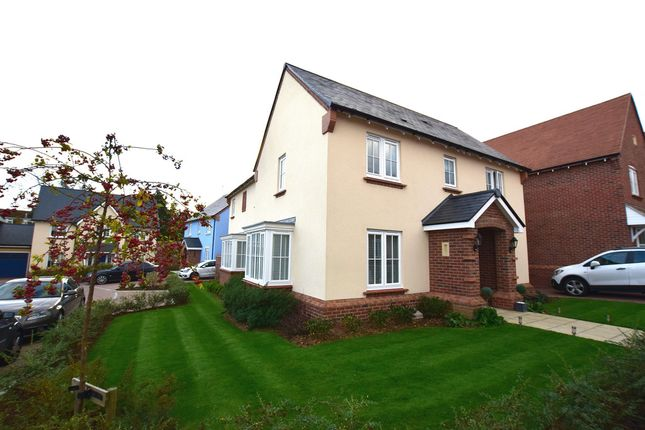 Thumbnail Detached house for sale in Cecily Avenue, Braintree