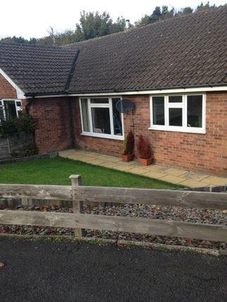 Thumbnail Semi-detached bungalow to rent in Princess Close, Scarborough
