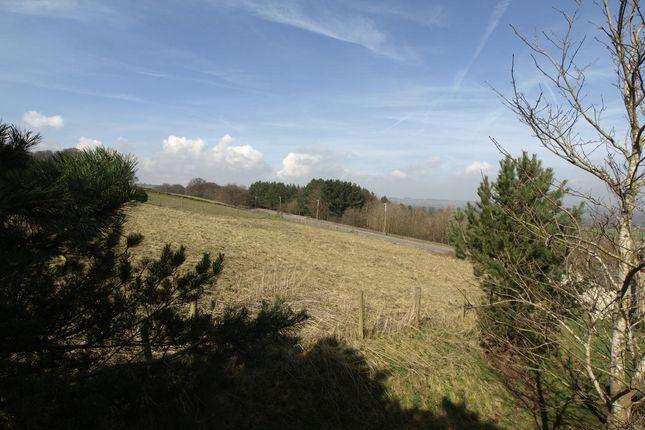 Front Garden of Wells Mount, Upper Cumberworth, Huddersfield HD8