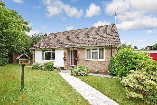 Thumbnail Detached bungalow for sale in Silverdale, Coldwaltham, West Sussex