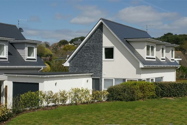Thumbnail Detached house for sale in Broadwater Avenue, Lower Parkstone, Poole, Dorset
