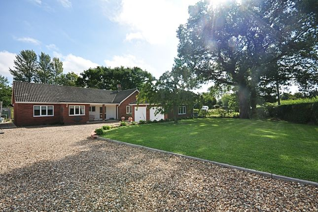 Thumbnail Detached bungalow for sale in Chequers Road, Tharston, Norwich