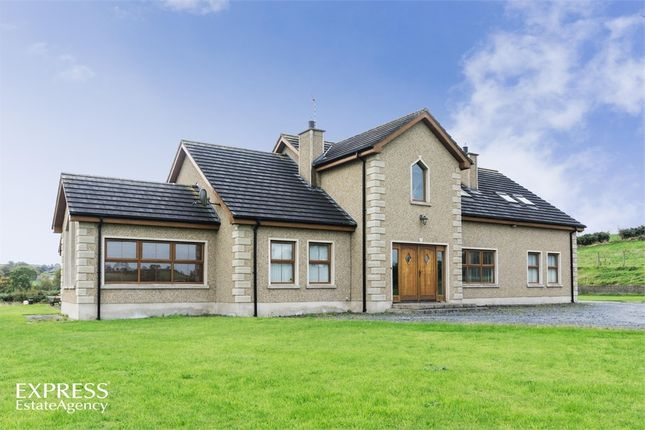 Thumbnail Detached house for sale in Cladymore Road, Mowhan, Armagh