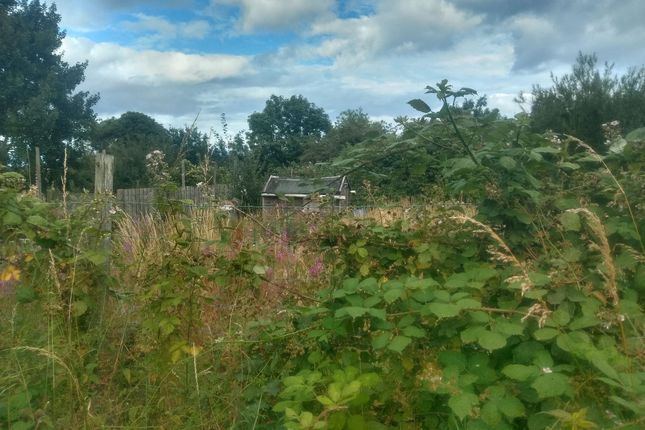Thumbnail Land for sale in Fifth Row, Linton Colliery, Morpeth