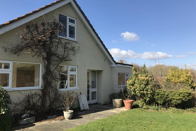 Thumbnail Bungalow to rent in Station Road, North Elmham, Dereham
