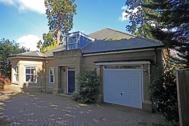 Thumbnail Detached bungalow to rent in Edenbridge, Kent