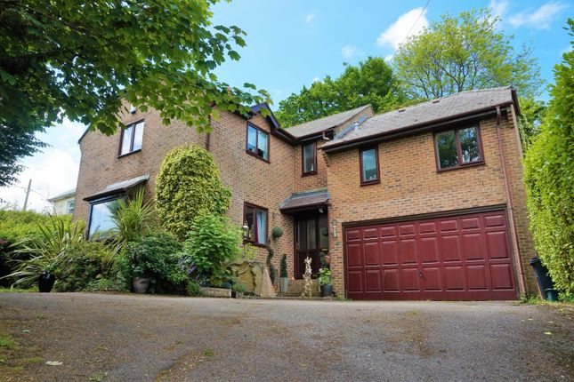 Thumbnail Detached house for sale in Dorchester Hill, Winterbourne Whitechurch