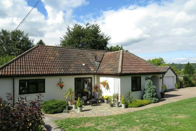 Thumbnail Detached bungalow for sale in Church Road, Winscombe