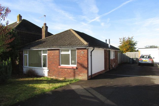Thumbnail Detached bungalow to rent in Bernina Avenue, Waterlooville, Hampshire