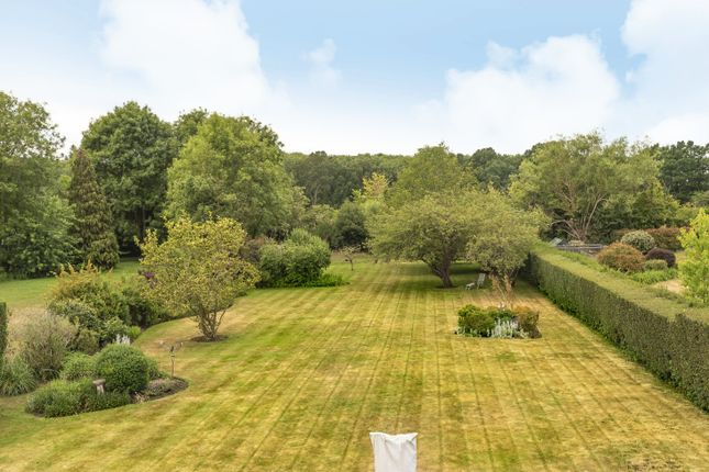 Garden of Ockham Road North, East Horsley KT24