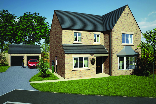 Thumbnail Detached house for sale in The Willerby, Longlieve Gardens, Pilsley, Derbyshire