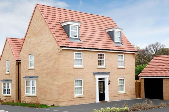 "Thumbnail Detached house for sale in ""Maddoc"" at Kielder Gardens, Leyland"
